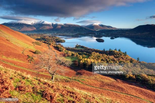 classic autumn time view from catbells mountain, lake district. uk. - derwent water - fotografias e filmes do acervo