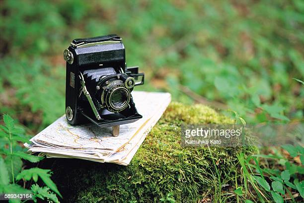 a classic camera and a map on a mossy rock - classic rock stock pictures, royalty-free photos & images
