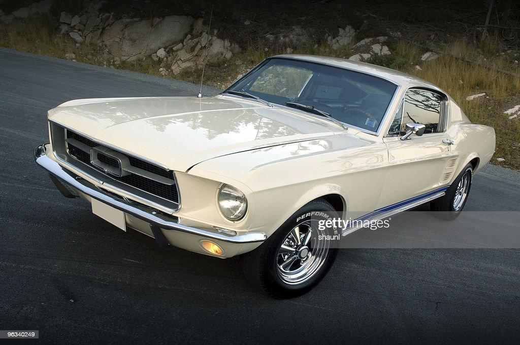 Classic Car : Stock Photo