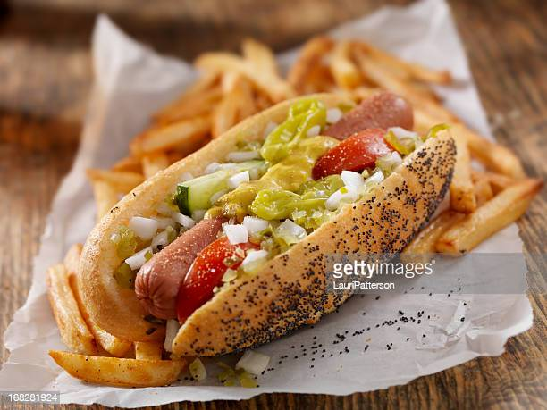 Classic Chicago Dog with Fries