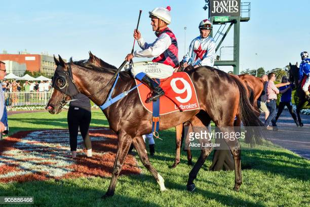 Classic Diva ridden by Chris Caserta returns to scale after winning the Ladbrokes Odds Boost at Caulfield Racecourse on January 17 2018 in Caulfield...