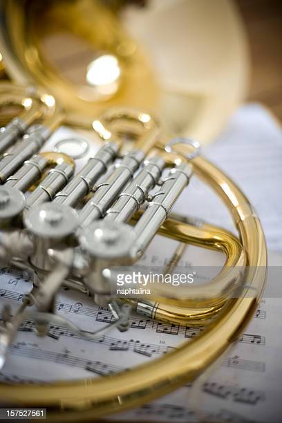 Classic french horn detail