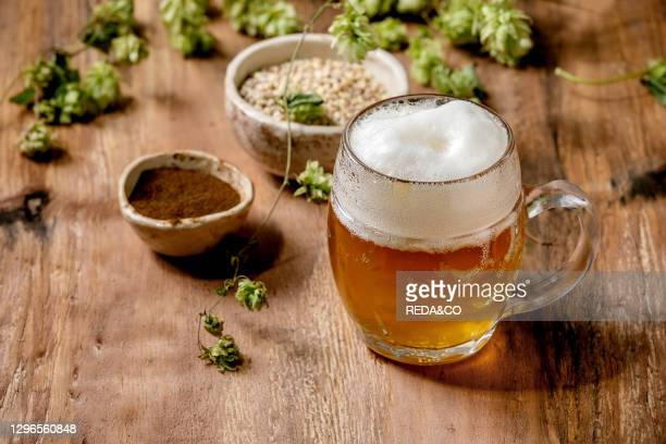 Classic glass mug of fresh cold foamy lager beer with green hop cones. Wheat grain and red fermented malt in ceramic bowls behind over wooden texture...