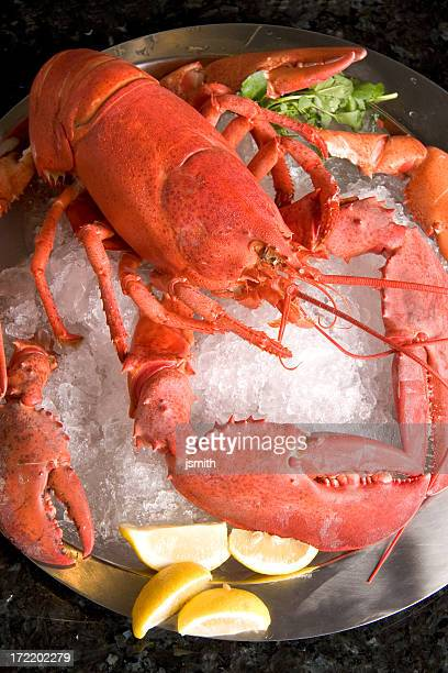 Classic Lobster