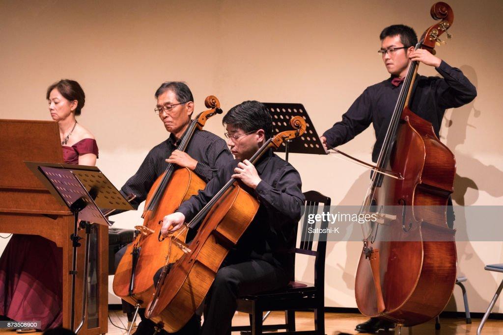 Classic music concert : Stock Photo