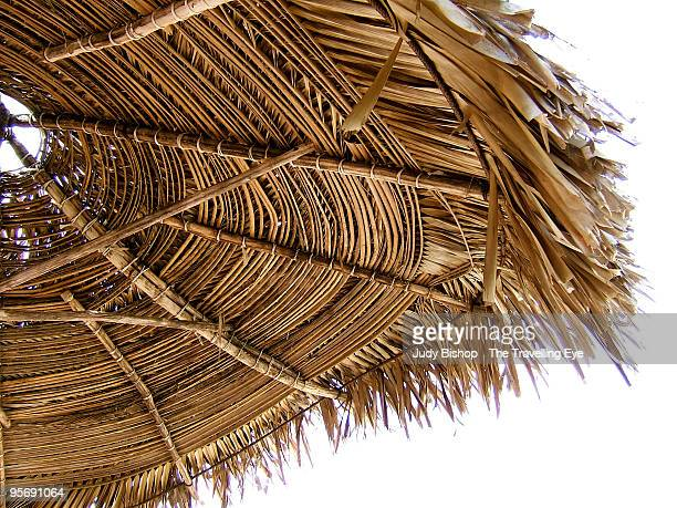Classic Palapa beach hut roof
