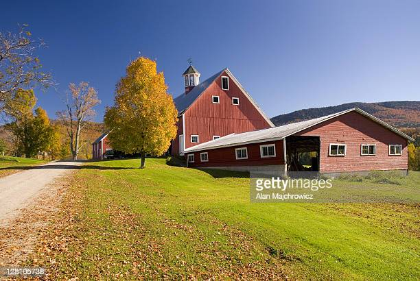 Classic red New England Barn with Maple tree in autumn, Vermont. USA