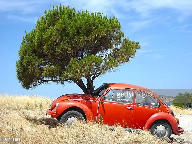 Clássico Volkswagen Beetle