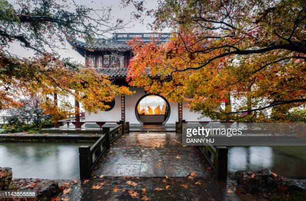 classical chinese garden at west lake in hangzhou in fall - hangzhou stock pictures, royalty-free photos & images