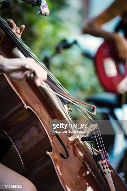 classical double-bass instrument close-up view, music concept - classical concert stock pictures, royalty-free photos & images