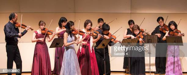 classical music concert - violin family stock photos and pictures