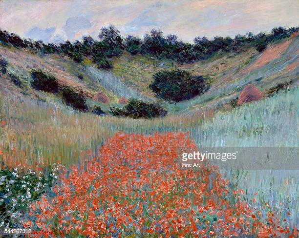 Claude Monet Poppy Field in a Hollow near Giverny oil on canvas 651 x 813 cm Museum of Fine Arts Boston
