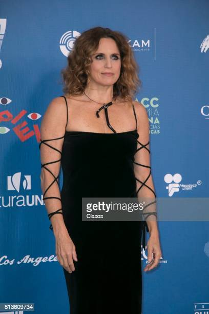Claudette Maille poses during during the 59th Ariel Awards Red Carpet at Palacio de Bellas Artes on July 11 2017 in Mexico City Mexico