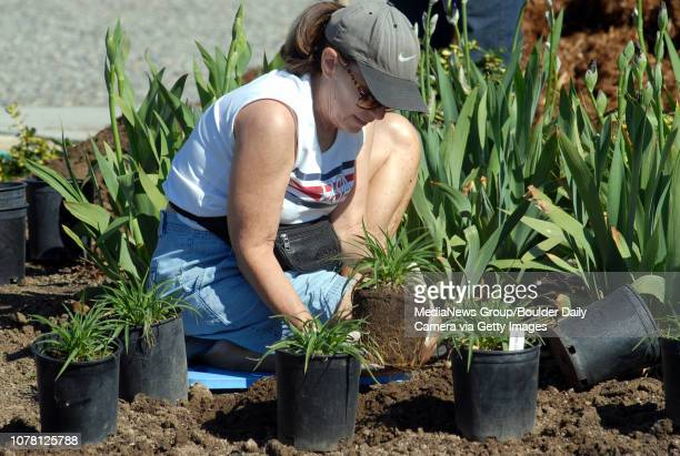 Claudia Calus with the Sow and Grow Garden Club helps plant the gardens around the Brunner Farm House along with the Boy Scouts on Saturday May 12...