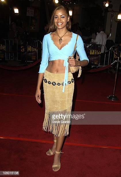 Claudia Jordan during 8 Mile Westwood Premiere at Mann Village Theatre in Westwood California United States