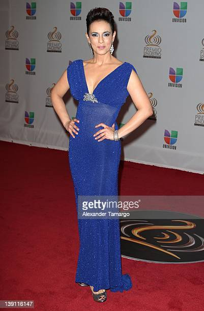 Claudia Trejos arrives at Univision's Premio Lo Nuestro a La Musica Latina at American Airlines Arena on February 16 2012 in Miami Florida