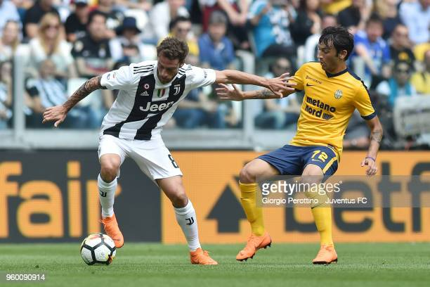 Claudio Marchisio of Juventus and Antonio Caracciolo of Hellas Verona FC compete for the ball during the serie A match between Juventus and Hellas...