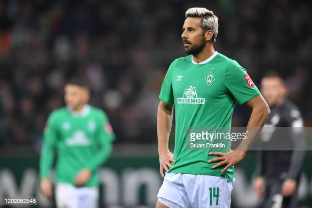 Claudio Pizarro of Bremen reacts during the Bundesliga match between SV Werder Bremen and TSG 1899 Hoffenheim at Wohninvest Weserstadion on January...