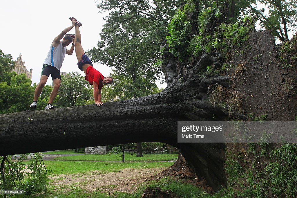Claus Espinosa (L) and Miguel Aguado from Spain clown around on a downed tree in Central Park after Hurricane Irene dumped more than six inches of rain on August 28, 2011 in New York City. The hurricane hit New York as a Category 1 storm before being downgraded to a tropical storm.