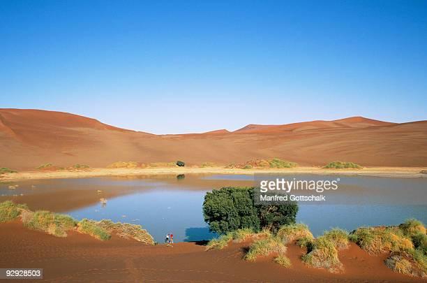 Clay Pan , Sossusvlei , Namib Naukluft Park , Namib Desert , Namibia