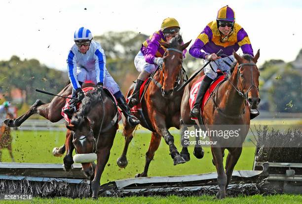 Clayton Douglas riding Wish Come True stumbles and almost falls as they jump the last hurdle as Two Hats and Sea King race alongside during race 5...