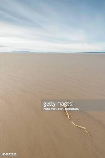 Clean Beach, Solway Firth, Cumbria, UK