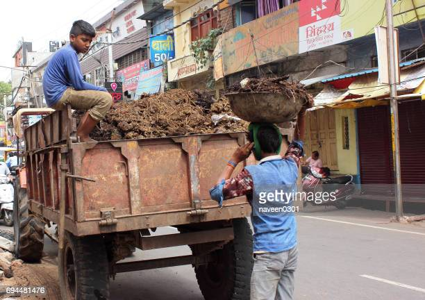 clean india drive - municipal workers cleaning road and collecting garbage - indore stock photos and pictures