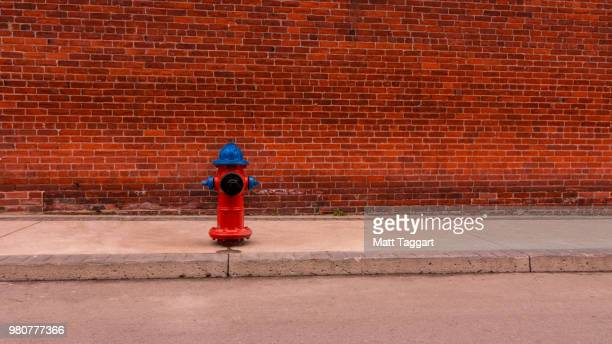 clean streets (redux) - fire hydrant stock pictures, royalty-free photos & images