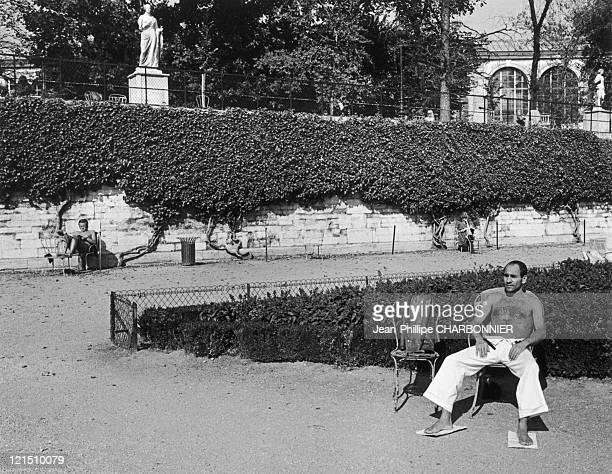 Clean Sun Bath In The Tuileries Gardens