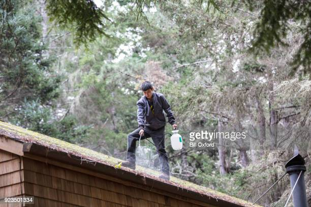 Cleaning moss from roof
