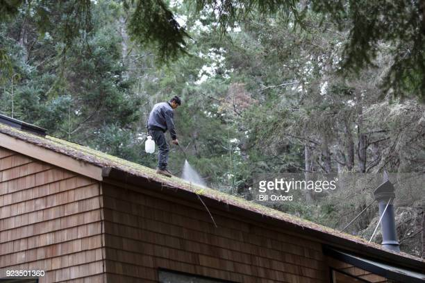 cleaning moss from roof - high pressure cleaning stock pictures, royalty-free photos & images