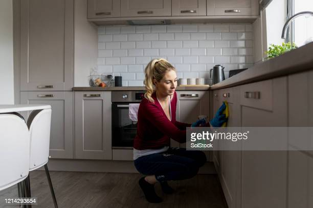 cleaning the kitchen - shielding stock pictures, royalty-free photos & images