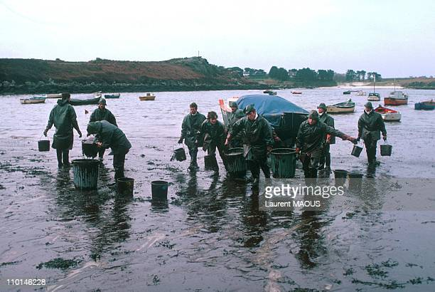 Cleaning up beaches due to the sinking of the Amoco Cadiz in Portsall, France in March, 1978.