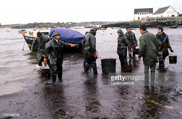 Cleaning up the oil-covered beaches due to the sinking of the Amoco Cadiz in Portsall, France in March, 1978.