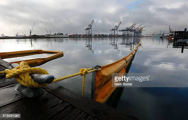 Cleanup crews using absorbent booms try to contain an oil spill leaked from a cargo ship at berth 202 in Los Angeles Harbor March 14 2016 The large...