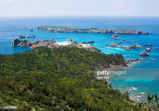 Clear blue sea and rainforest, Ogasawara, Japan