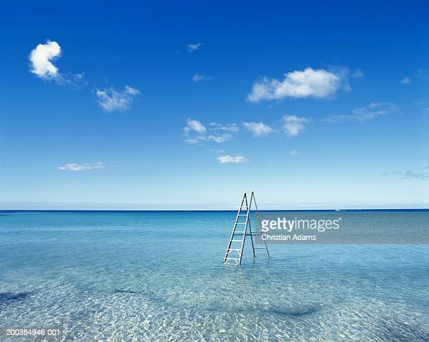 Clear blue sea, stepladder placed in shallow water