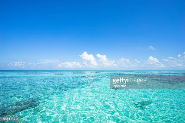 Clear blue tropical water with coral, Sekisei Lagoon, Okinawa, Japan