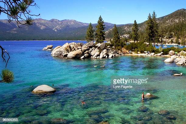 clear, cool water on a hot summer day - lake tahoe stock photos and pictures