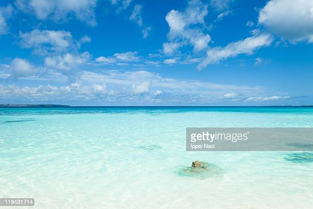 clear lagoon water and tropical beach, okinawa - ippei naoi stock photos and pictures