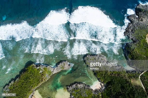 澄んだ海と木々 や岩。