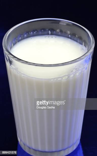 Clear serving glass of fat free milk (Bos primigenius)