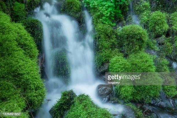clear spring water and mossy rocks at suzueden(shizueiden) - isogawyi stock-fotos und bilder
