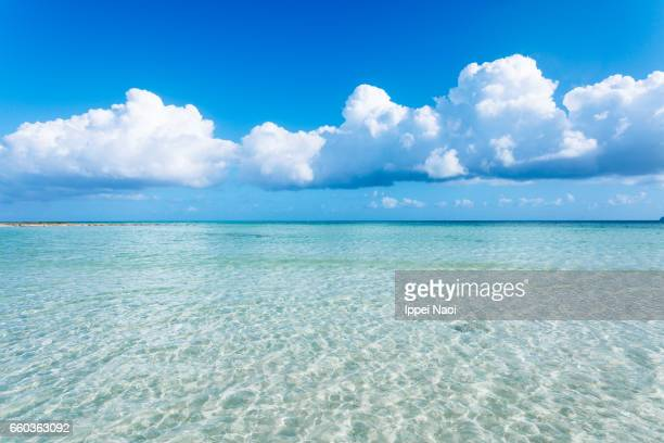 clear tropical water and cumulus clouds on the horizon, okinawa - 澄んだ空 ストックフォトと画像