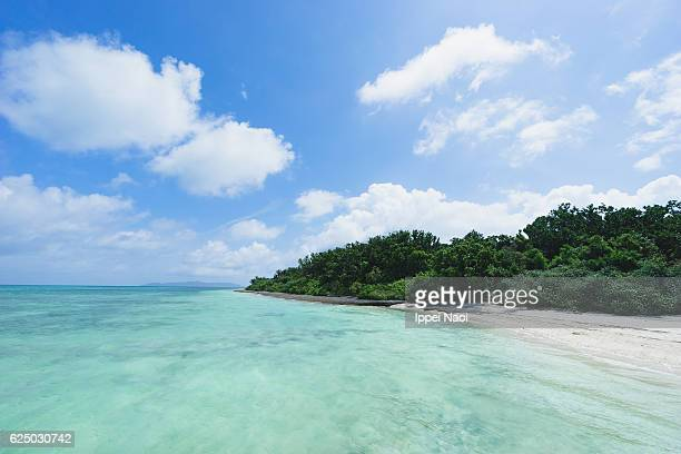 Clear tropical water and white sand beach of Iriomote-Ishigaki National Park, Japan
