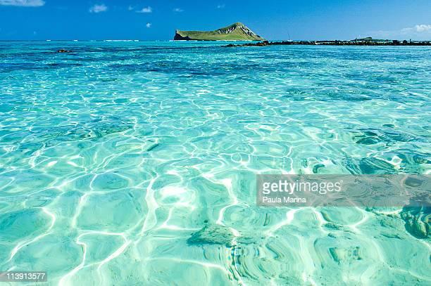 Clear water in Hawaii