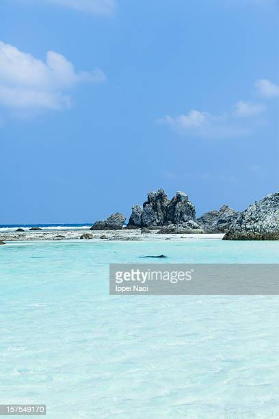 clear water of tropical lagoon beach, okinawa - ippei naoi stock photos and pictures