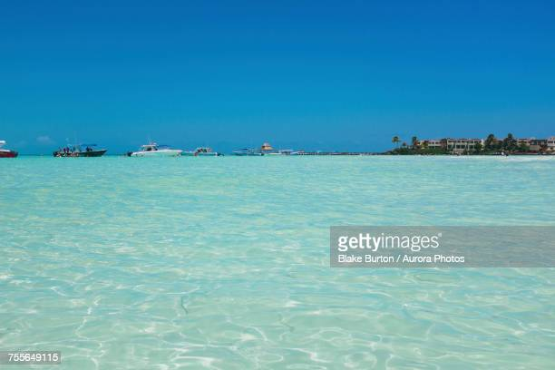 clear water on beaches of isla mujeres, mexico - mujeres fotos stockfoto's en -beelden