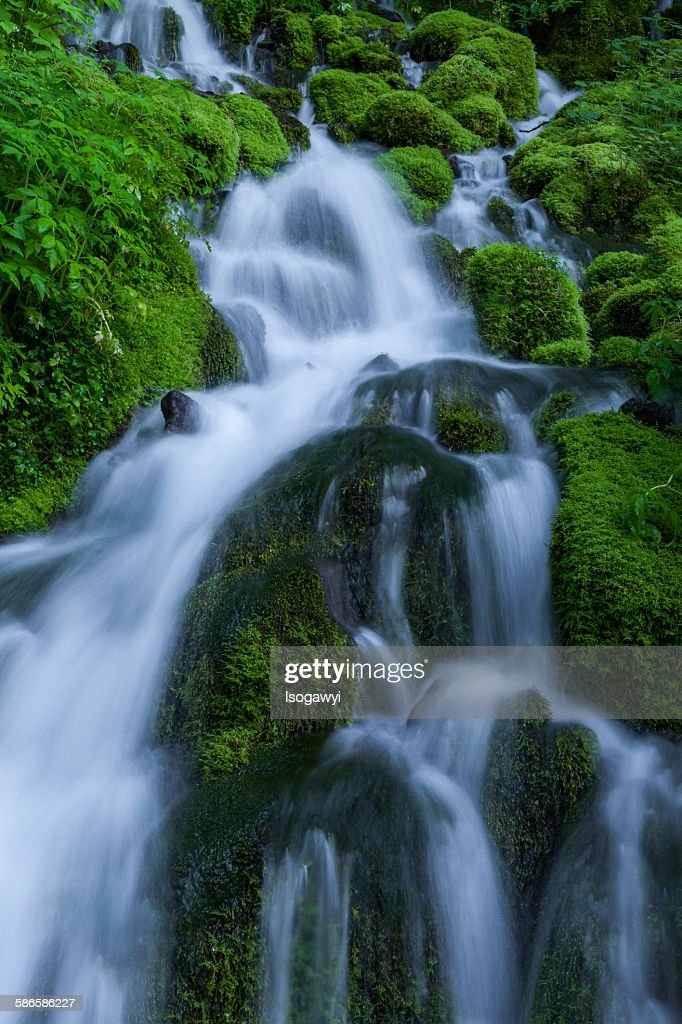 Clear Water On The Mossy Rocks : ストックフォト
