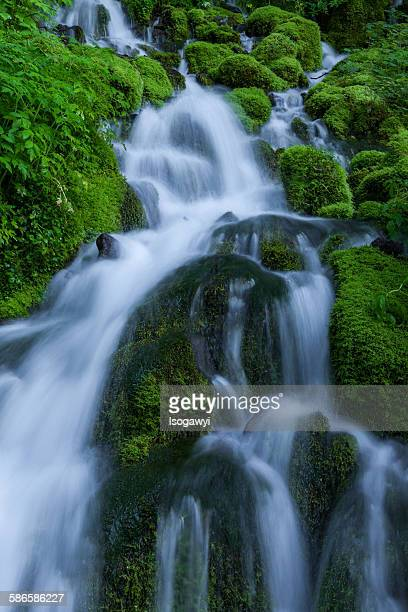 clear water on the mossy rocks - isogawyi ストックフォトと画像